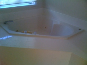 new elevated bath tub